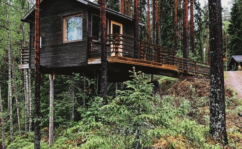 Skogen och träsket