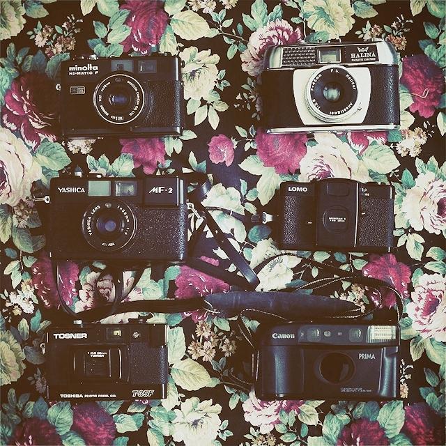 20130506_kameror
