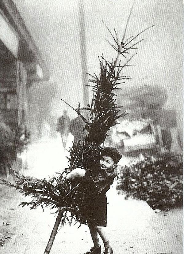 christmastreeandkid