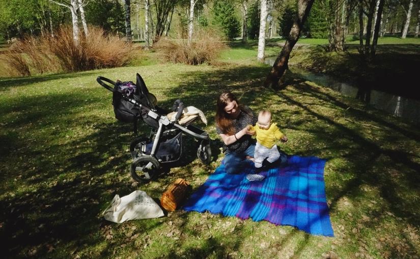 Är 'picknick' synonymt med 'chooselife'?