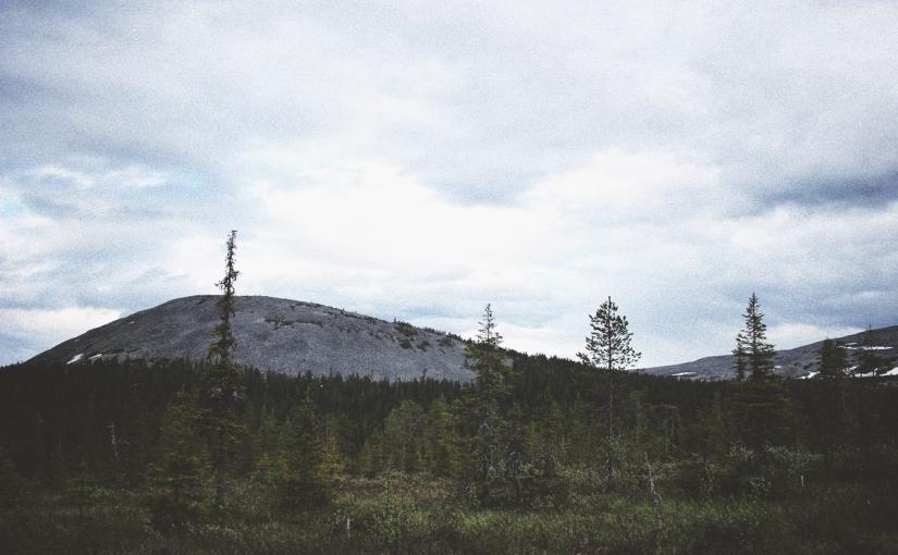 En Sejterunda i nordligjuni